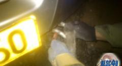 חיבור רצועת רסן לחילוץ SUV Resc4U
